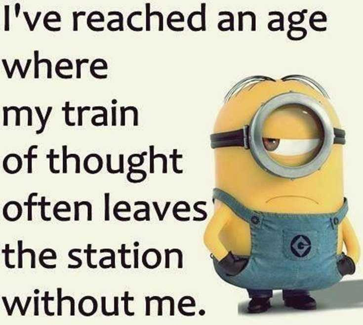 Top 28 Funniest Minions Memes 12
