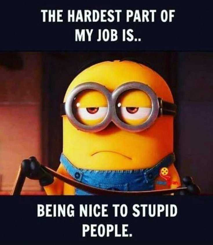 Top 28 Funniest Minions Memes 22