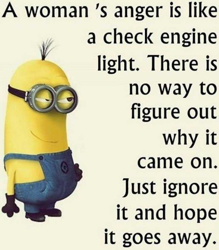 Top 28 Funniest Minions Memes 24