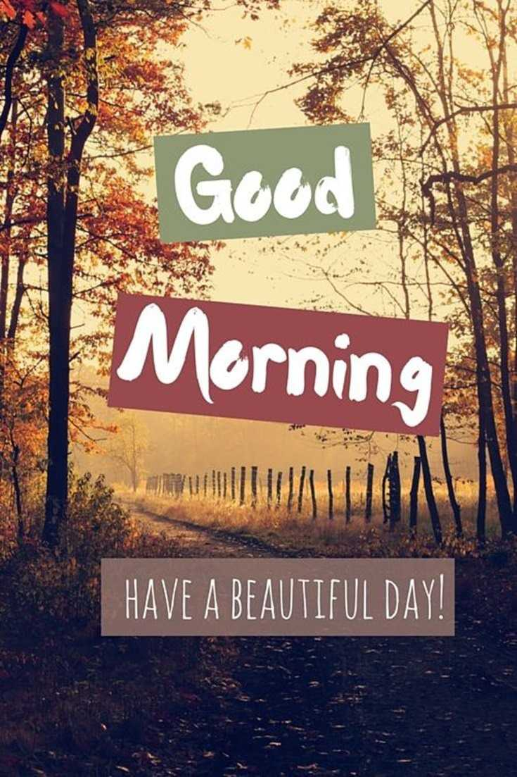 35 Good Morning Quotes with Beautiful Images 27