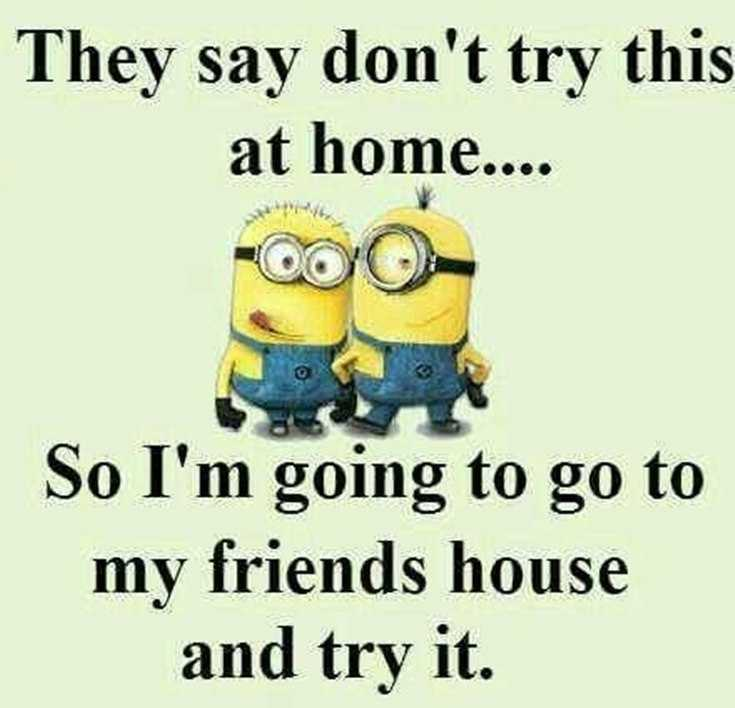 56 Minions Quotes to Reignite Your Love 43