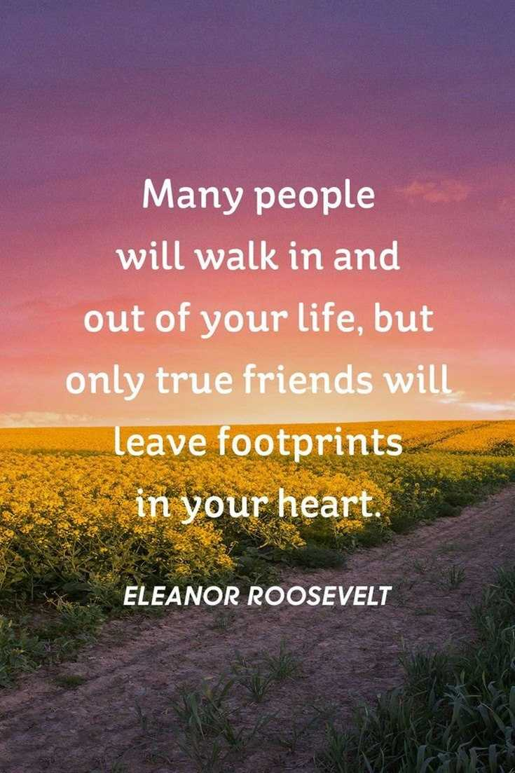 57 Best Friendship Quotes to Enriched Your Life 004