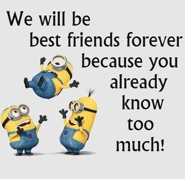 45 Cute Best Friend Quotes True Friendship Quotes 1