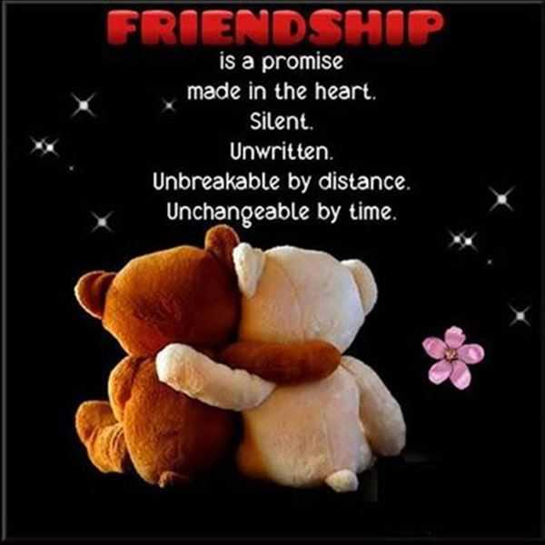45 Cute Best Friend Quotes True Friendship Quotes 35