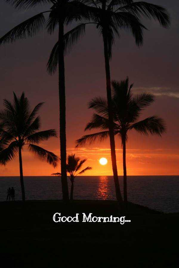 55 Good Morning Quotes with Beautiful Images 55
