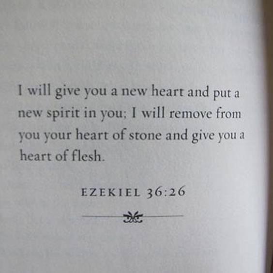 112 Broken Heart Quotes And Heartbroken Sayings broken quotes about heartbreak