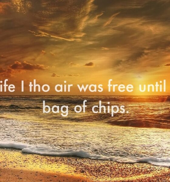 Short Funny Quotes About Life to Make You Laugh