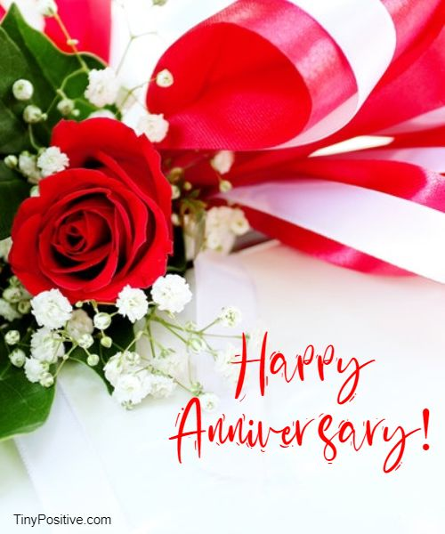 happy wedding anniversary quotes with images messages and wishes