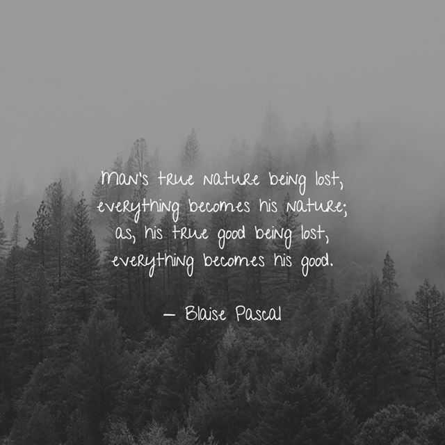 do you think about these nature quotes and sayings