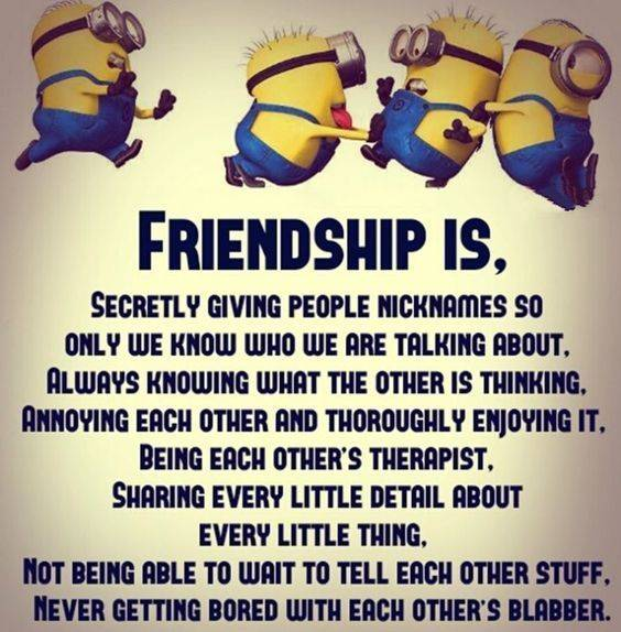 40 witty friendship quotes and true friends quotes funny funny buddy crazy best friend