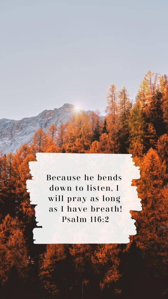 60 Meaningful strength short inspirational bible verses 5