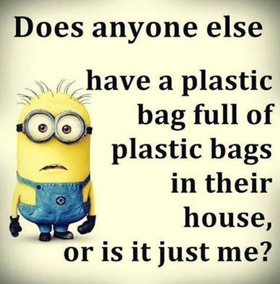 45 Funny Jokes Minions Quotes With Minions 39
