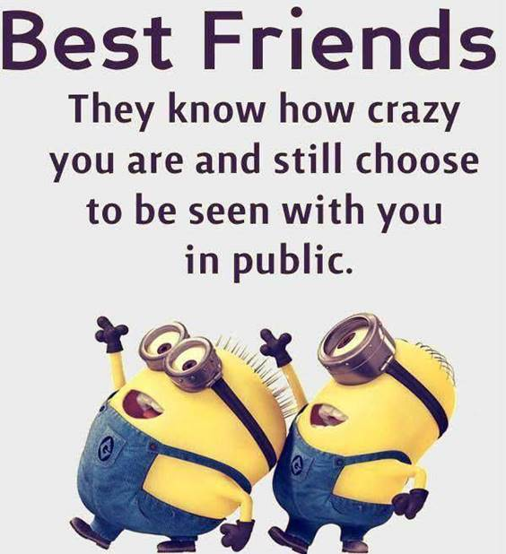 45 Funny Jokes Minions Quotes With Minions 7