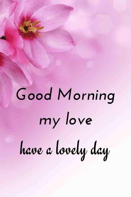 50 Best Love Good Morning Quotes Messages Morning Wishes 7