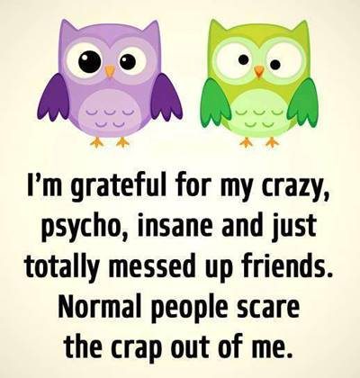 52 Crazy Funny Friendship Quotes for Best Friends 3