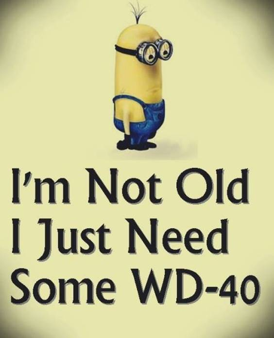 35 Funniest Minion Quotes Of The Week minion quotes pics hilarious minions