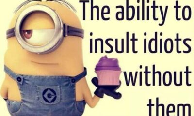 35 Funniest Minion Quotes Of The Week 16