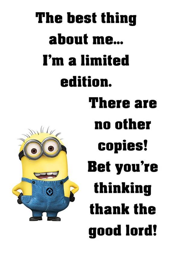 35 Funniest Minion Quotes Of The Week minion images and quotes despicable me minion