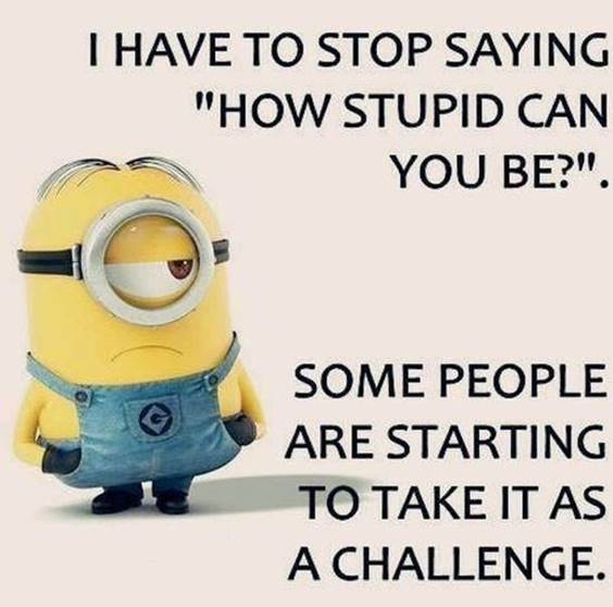 35 Funniest Minion Quotes Of The Week minion quotes about life minions images