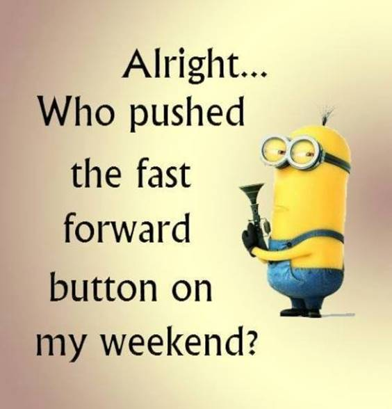 35 Funniest Minion Quotes Of The Week 2
