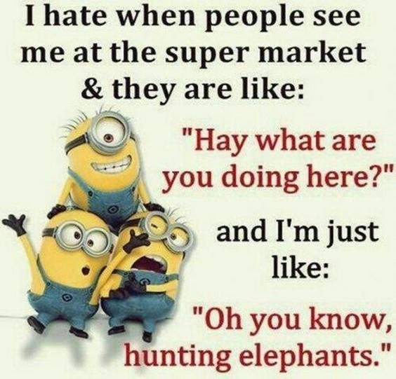 35 Funniest Minion Quotes Of The Week funny pics of minions
