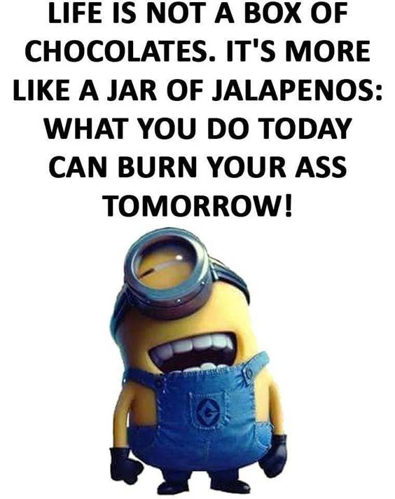 35 Funniest Minion Quotes Of The Week funny minion quotes about life