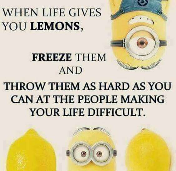35 Funniest Minion Quotes Of The Week 25