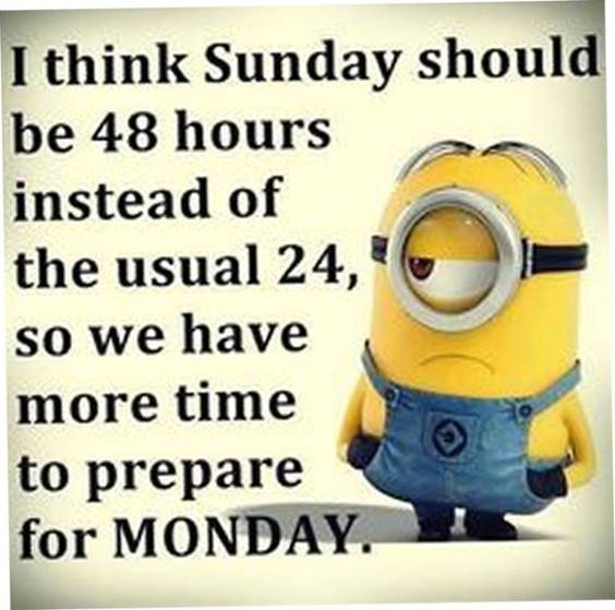 35 Funniest Minion Quotes Of The Week 27