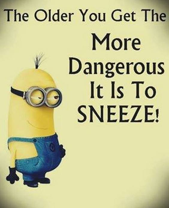 35 Funniest Minion Quotes Of The Week despicable me funny minions motivational minions quotes funny life  minion images