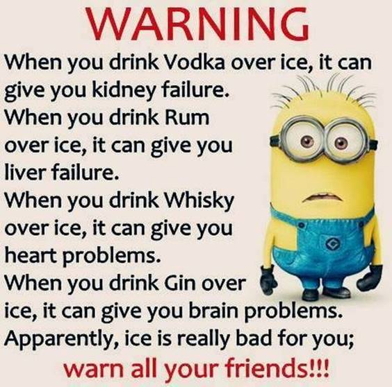 35 Funniest Minion Quotes Of The Week 4