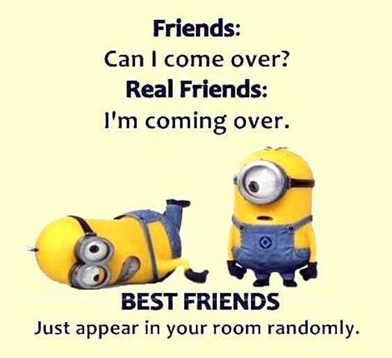 35 Funniest Minion Quotes Of The Week 5