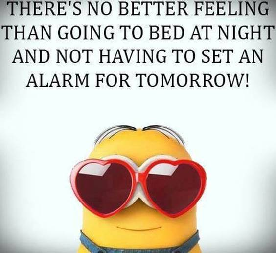 35 Funniest Minion Quotes Of The Week 9