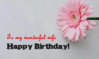 Birthday Wishes for Wife Birthday Quotes and Messages