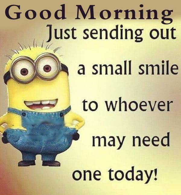 good morning i love you meme | funny good morning images, good mornings images, love messages pictures
