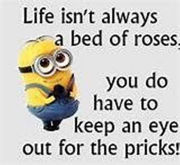 good morning beautiful meme for her | good morning sayings and images, morning images for him, have a great day funny meme
