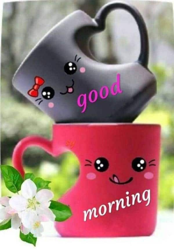 good morning messages with images | have a good day memes, good morning memes funny, good morning thursday meme