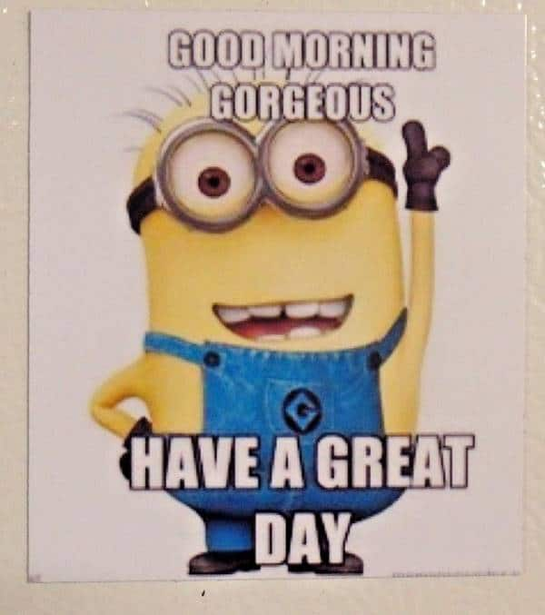 dirty good morning memes | good morning quote, good morning life quotes images, pics of good morning, have a great day at work meme