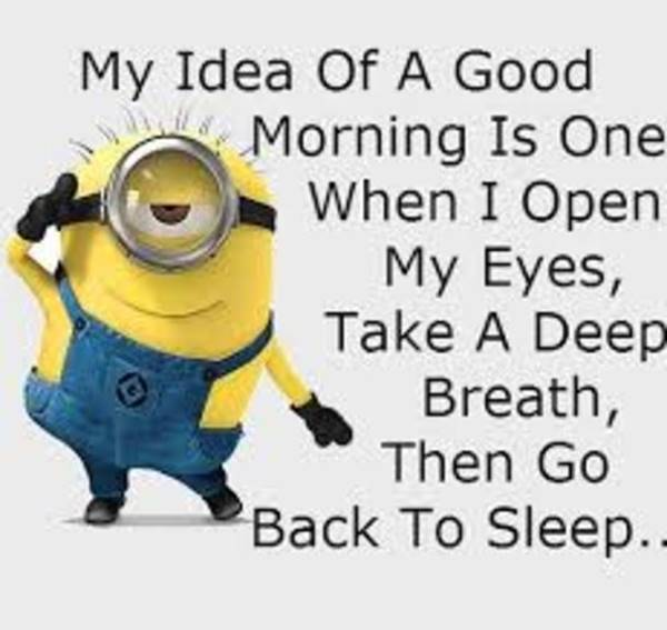 110 Good Morning Memes and Good Morning Quotes With Images 8