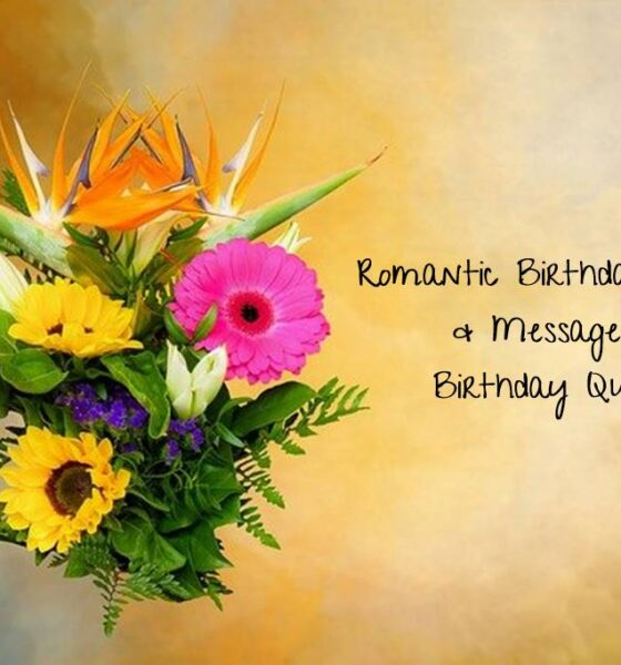 Romantic Birthday Wishes Messages Birthday Quotes