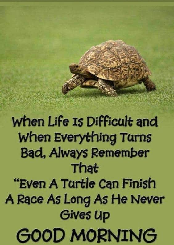 38 Motivational Good Morning Quotes with Beautiful Images | good morning quotes positive, good morning images god, faith good morning quotes