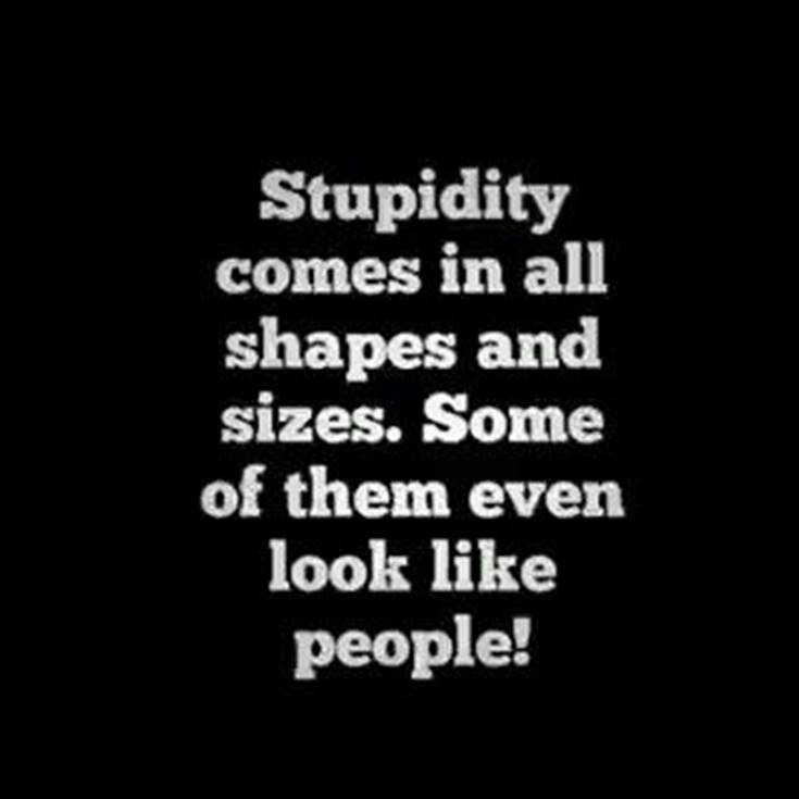 45 Of The Best Funny Quotes Ever | daily quotes funny, quotes of the day funny, funny day quotes