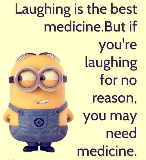 75 Funny Quotes Laughing So Hard   humour quotes, new funny quotes, funny wise quotes