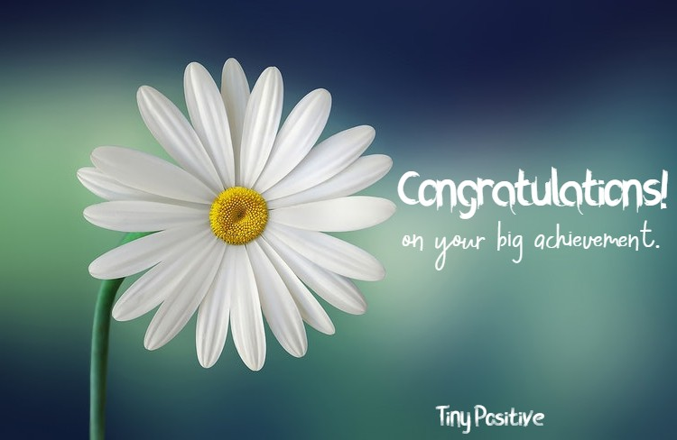 145 Congratulations Wishes On Promotion | congratulations wishes letter on promotion, how do you congratulate someone on their promotion, how to say congratulations for a promotion