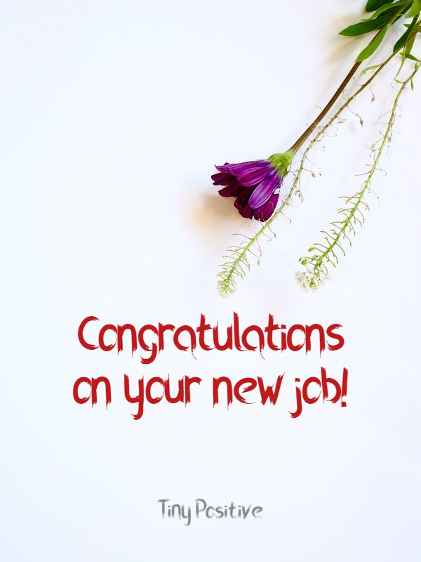 165 Best Wishes for New Job – Congratulations Messages Quotes Messages | best wishes for new job to friend, new job wishes for him, new job wishes for her