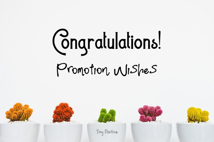 165 Promotion Wishes – Congratulations Message on Promotion | congratulations on promotion, congratulations quotes, congratulations images