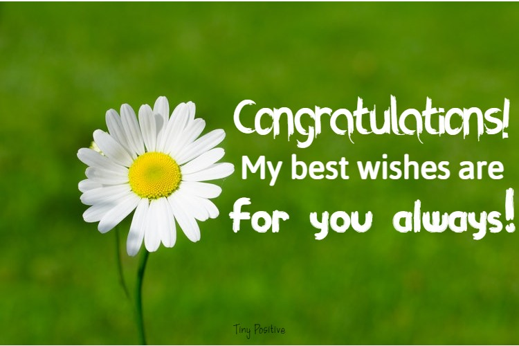 185 Congratulations Messages Wishes and Quotes What to Write in a Congratulations Card | messages, congratulations messages for baby, baby congratulations messages