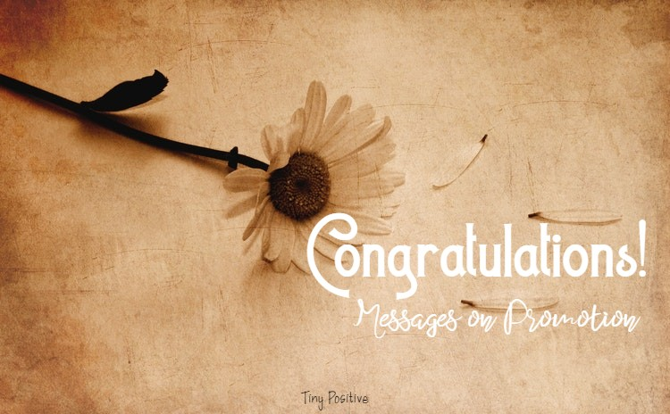 185 Congratulations Messages Wishes and Quotes What to Write in a Congratulations Card | congratulations quotes, congratulations, word of congratulations