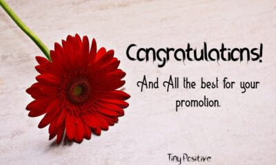 Congratulations Wishes On Promotion – Simple Congratulations Messages Quotes 3