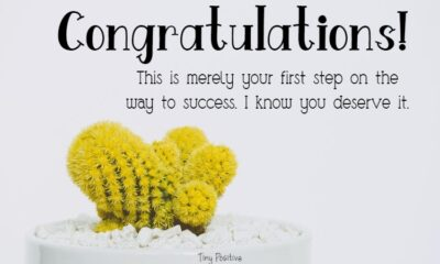 Promotion Wishes – Congratulations Message on Promotion