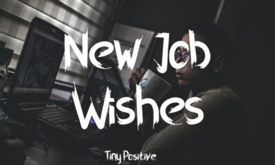 What to Write Best Wishes for New Job – Simple Congratulations Messages Quotes Messages